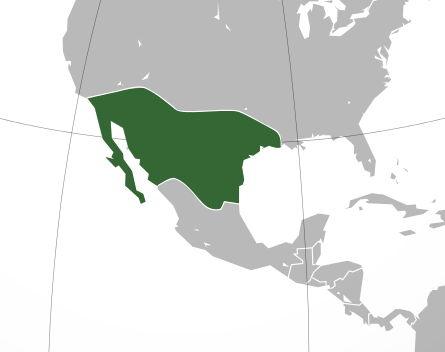 Native americans why didnt the mesoamerican civilisations spread basically a huge swathe millions of square kilometres deep cutting right across the continent of very dry ecosystem with very limited water and minimal gumiabroncs Image collections