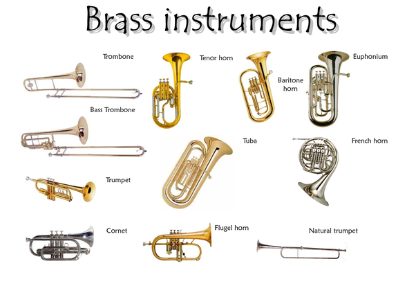 What are some fun facts about trumpets for kids quora