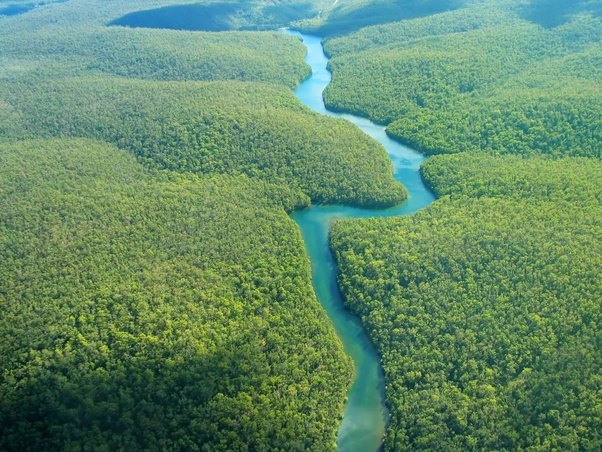 What Is The Second Largest River In The World Quora - Largest river in the world
