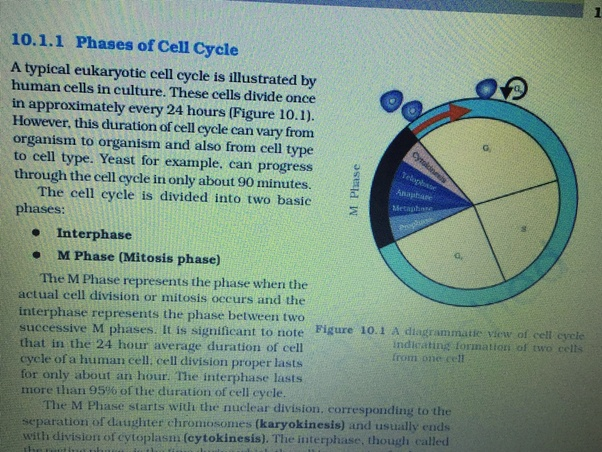 What are the changes made in the NCERT biology class 11 for
