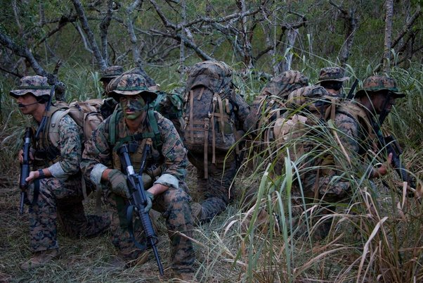 how do force recon  recon battalion  marsoc  and scout snipers of the marines work  and how are