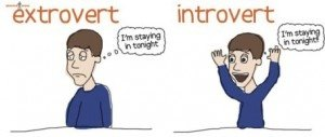 Is there a dating site for introverts