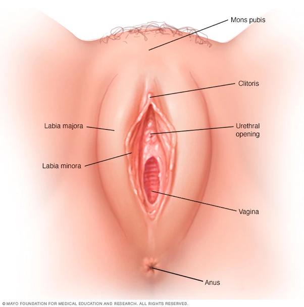 Sex with hot nurse