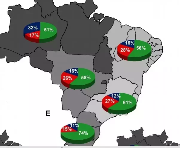 what are the major ethnic groups in brazil