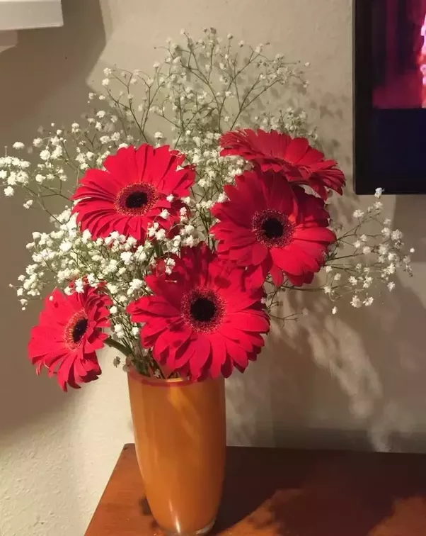 How much does it cost to make a home made flower vase? - Quora