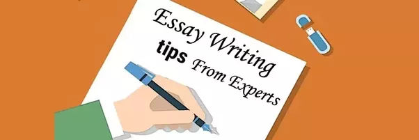Messy Room Essay  If You Dont Require A Sample Essay To Reference For Your Own Work  Bestassignmentexperts Also Offer Excellent Essay Editing And Proofreading  Services What Is A Good Compare And Contrast Essay Topic also Essays On The Renaissance Do You Need A Discount For The Essay Writing Service  Quora Anatomy Essays
