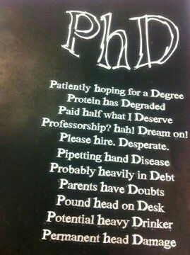 Best phd to get