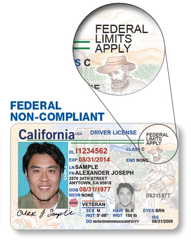 renew drivers license ca h1b