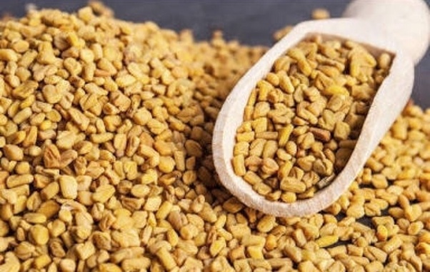 What is the use of fenugreek in hair? - Quora