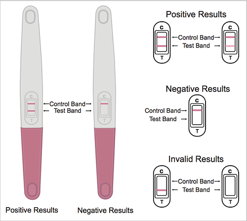 Does an invalid pregnancy test mean you are pregnant? - Quora
