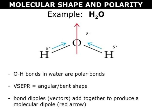 How To Tell If A Molecule If Polar Or Nonpolar Quora