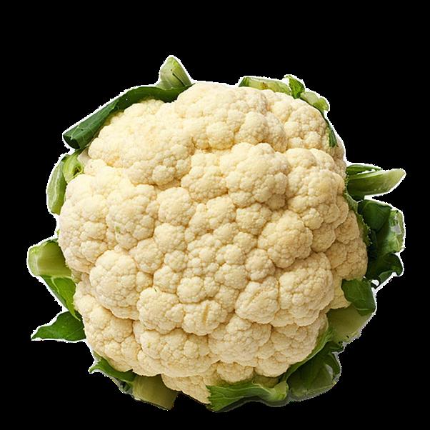 What Is The Scientific Name Of Cauliflower Quora