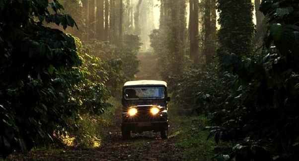 What's the best and cheapest way to travel from Bangalore