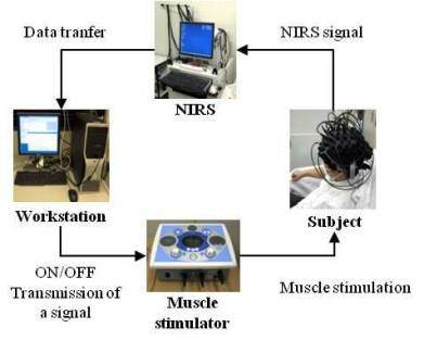 What Are The Requirements For A New BrainComputer Interfaces - Hardware and software requirements