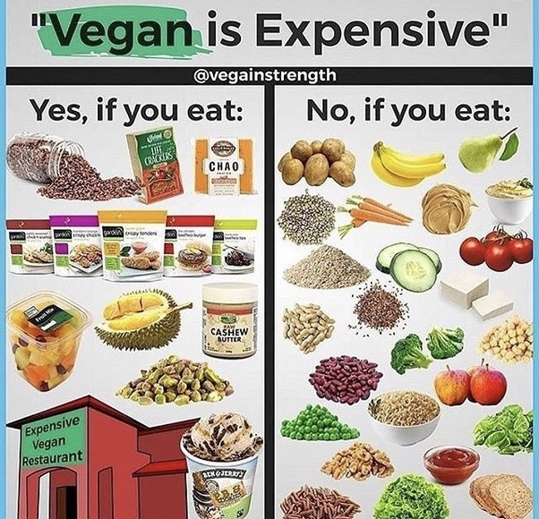 is eating a raw vegan diet expensive