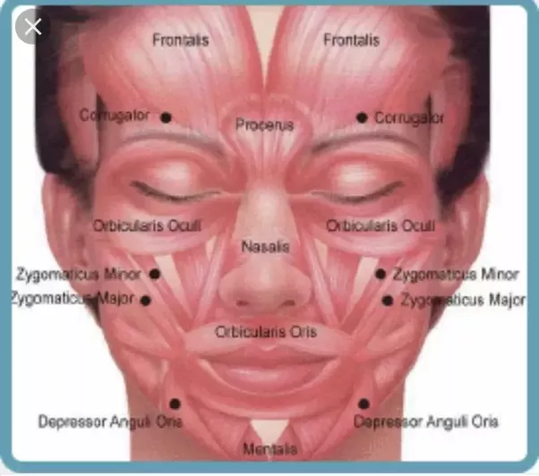 Facial wrinkles at 57