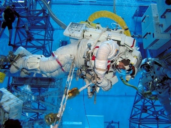 why do astronauts in space feel no gravity quizlet - photo #18