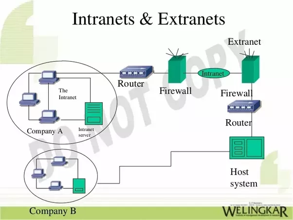 Dibujos De Internet Intranet Y Extranet: What Is The Difference Between The Internet, Intranet, And