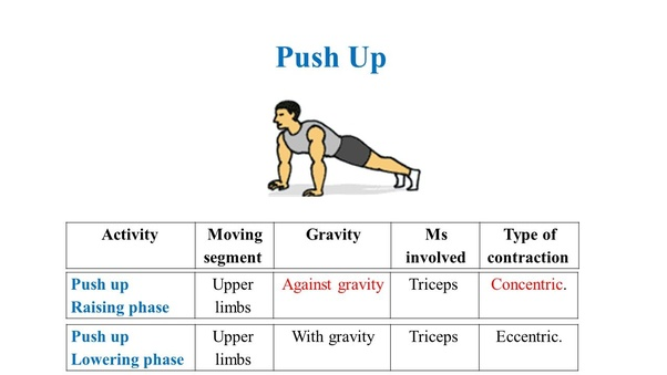 What are the benefit differences between pushups and planks
