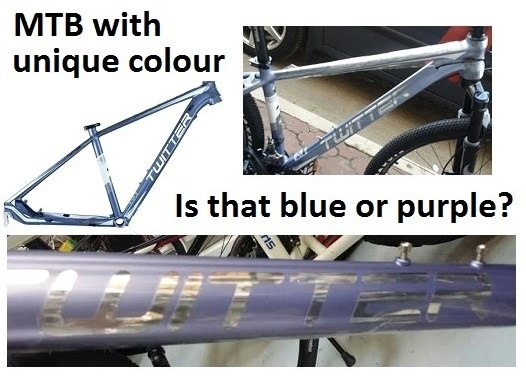 Can a quality bike be ordered from an online retailer? If so, what ...