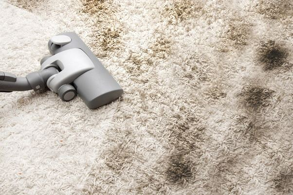 How To Remove Dark Spots From My Carpet Quora