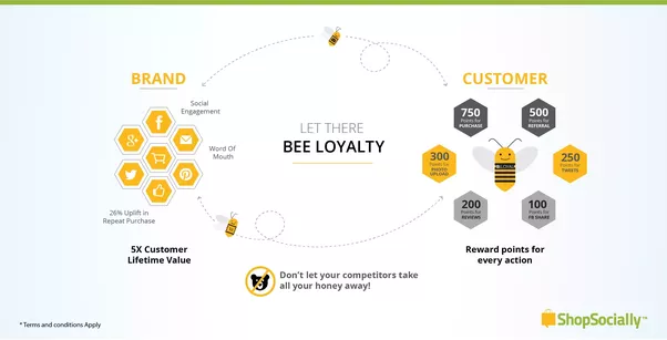 how to make a loyalty program