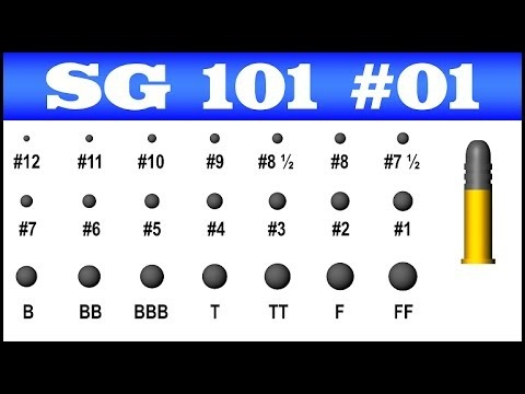 Can you rank all 12 gauge shotgun rounds from the least ...