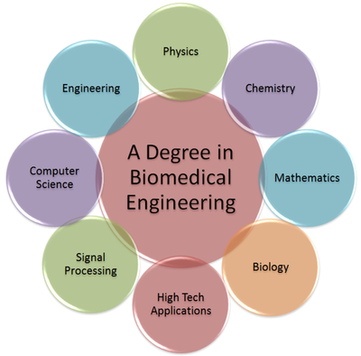 What is biomedical engineering and what kind of work do these ...