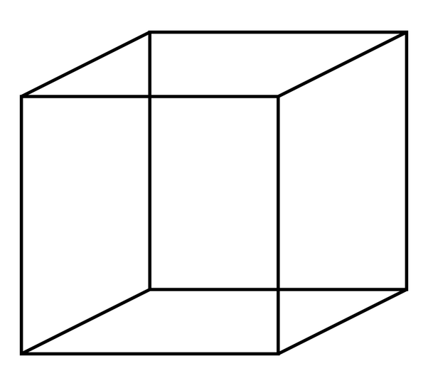 How does a regular polygon look like  Answerscom