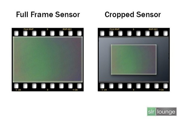 Which is better: full frame or crop sensor? - Quora