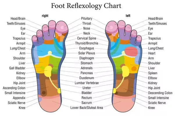 Is foot reflexology proven to have a positive effect on other parts ...