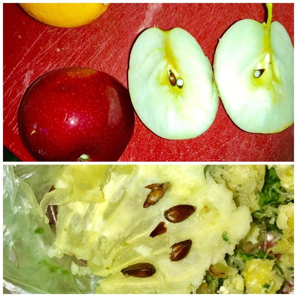 Is it safe to juice whole apples including the seeds? - Quora
