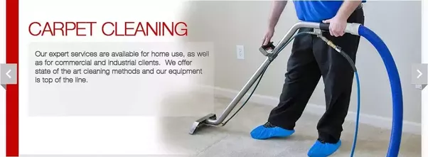 Where can I find a professional carpet cleaning service company in ...
