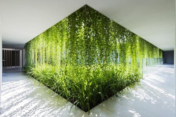 Should I Choose A Green Company For My Interior Office Design Quora