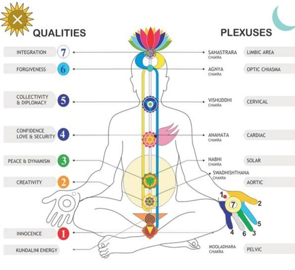 Why do we vibrate during meditation? - Quora