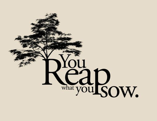Apa Arti Istilah You Reap What You Sow Quora