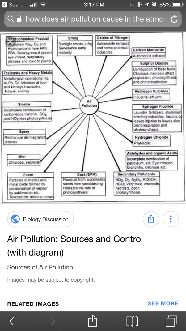 essay about environmental change by definition