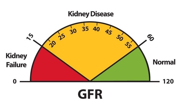 What is the life expectancy of someone with 17% function of kidneys ...