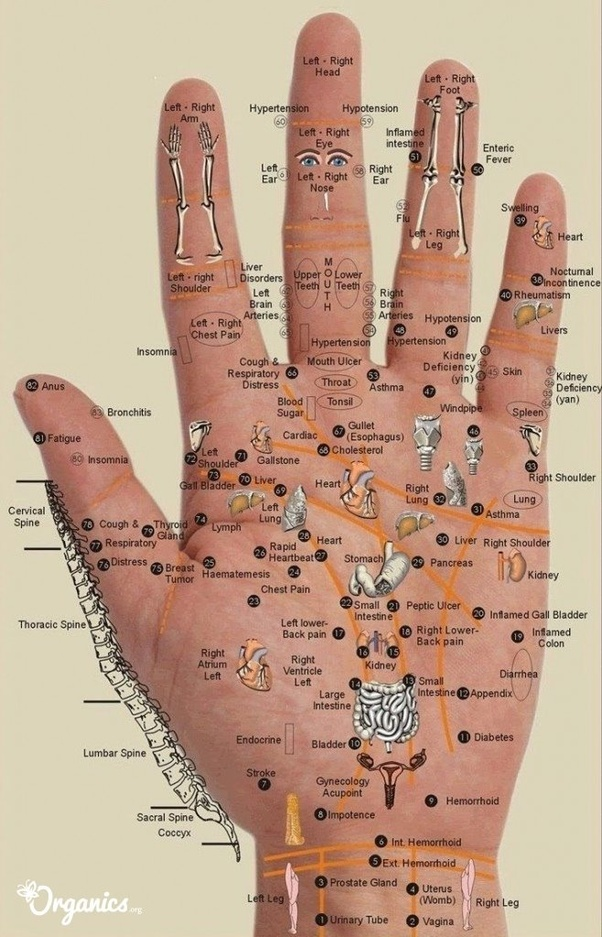 What does an itchy right palm mean? - Quora