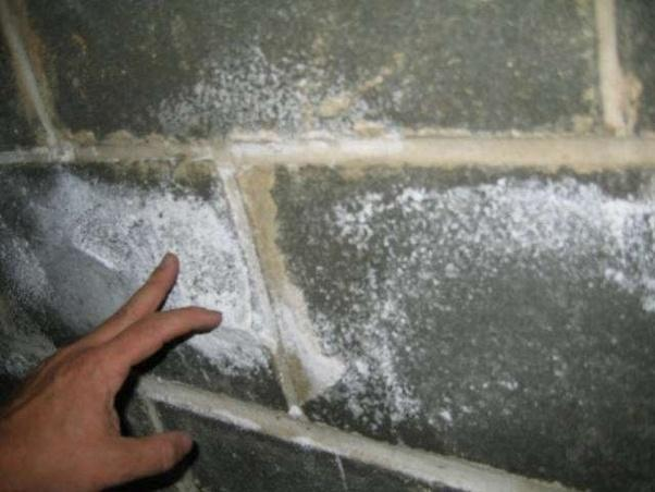 What Causes White Mold On Walls Quora