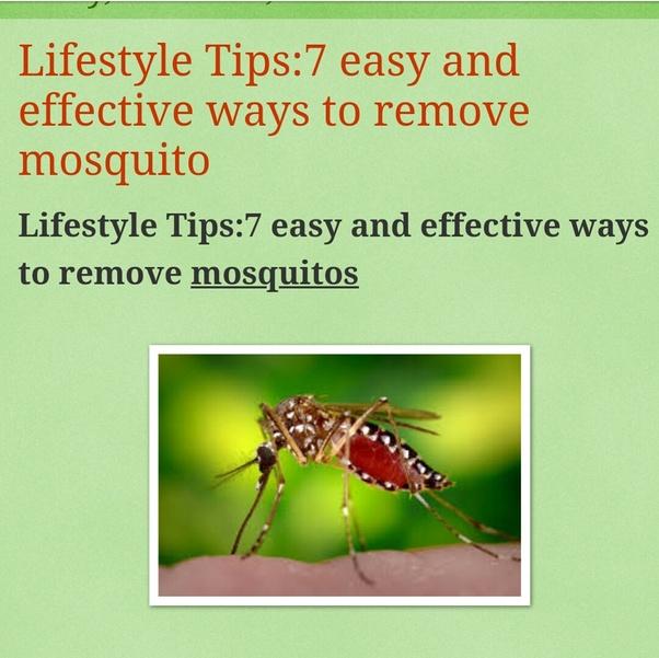 Deet Piciardin Bug Spray Repellent Kids Children Bugs Bites