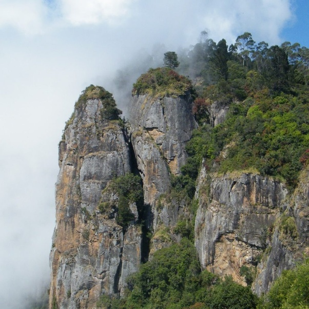 Top 10 Place To Visit In Kodaikanal India Tourism Tat: Which Are The Best Honeymoon Destination In India For