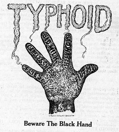 Can we eat milk while having typhoid? - Quora