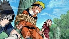 How many seasons does Naruto have? - Quora