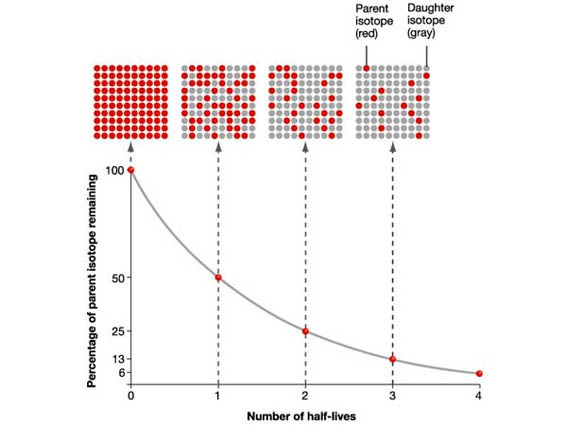 half life carbon dating