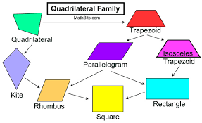Image result for quadrilateral