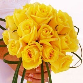 What flowers symbolize friendship quora as it symbolizes friendship radiates a good positive vibes and with joyful affection these yellow flowers symbolize new beginnings happiness and mightylinksfo