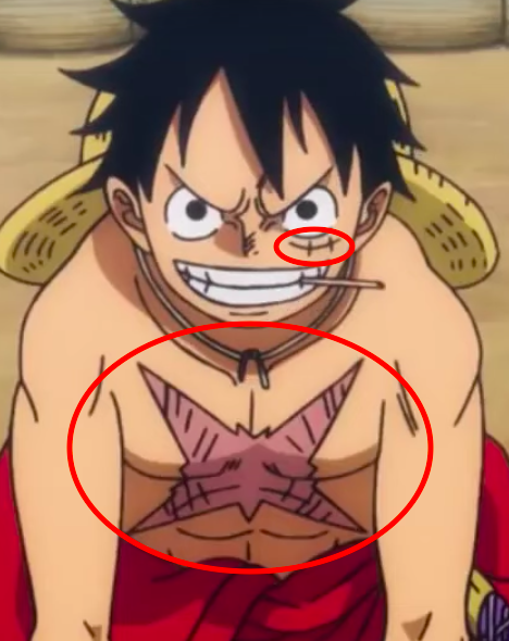Who Gave Luffy The Scar In His Body In One Piece Quora