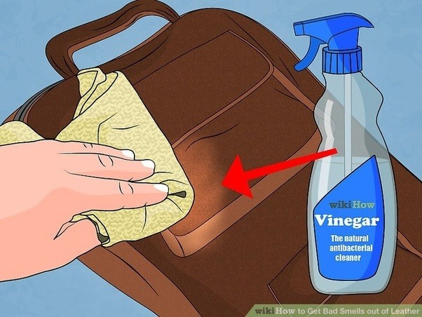 Reasons For Leather Smells