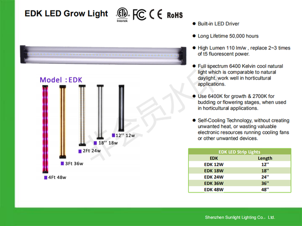 What is the forecast for the LED lights market in Saudi